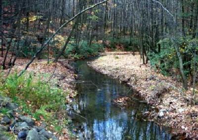 Hikers on the Ridgetop Trail will see Sugar Notch Run.
